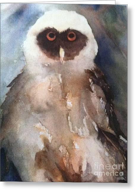 Owl Greeting Card by Sherry Harradence