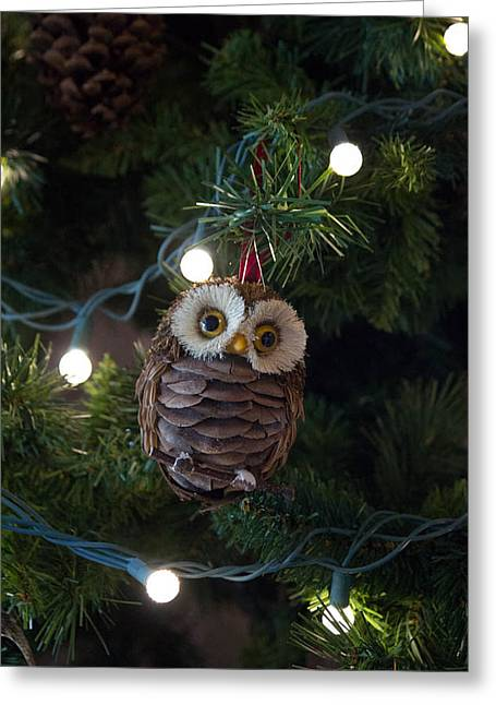 Owly Christmas Greeting Card