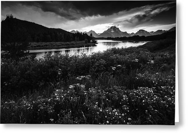 Oxbow Bend In Black And White Greeting Card by Vishwanath Bhat