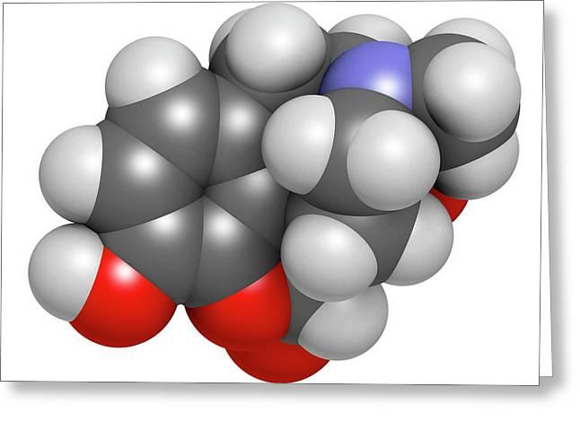 Oxymorphone Opioid Analgesic Drug Greeting Card