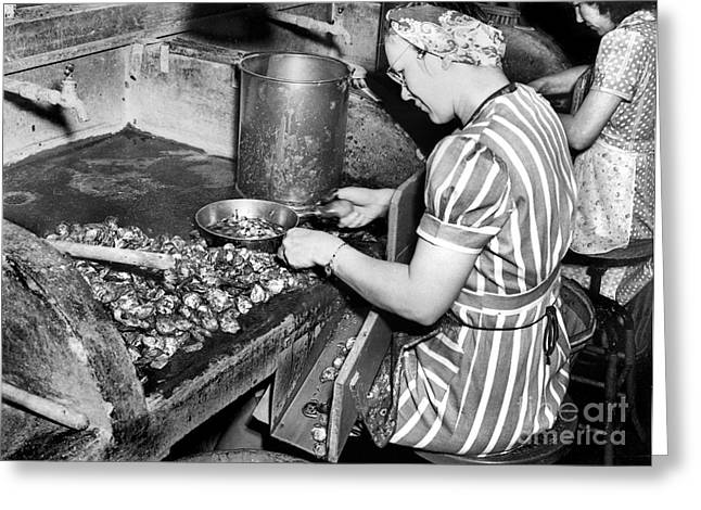 Oyster Industry Shuckers 1948 Greeting Card