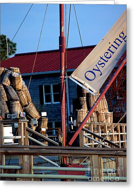 Oystering History At The Maritime Museum In Saint Michaels Maryland Greeting Card