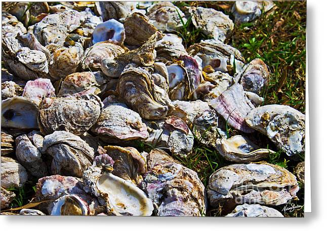Oysters 01 Greeting Card