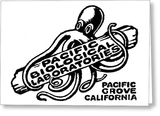 Pacific Biological Laboratories Of Pacific Grove Circa 1930 Greeting Card