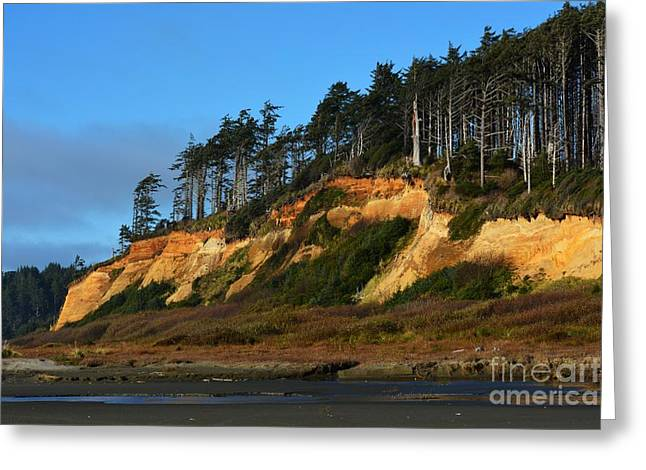 Pacific Coastline Greeting Card by Gayle Swigart