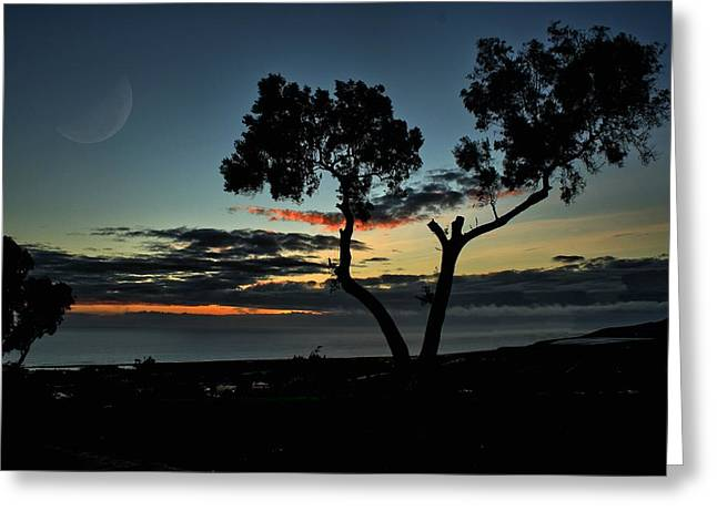 Pacific Evening Greeting Card by Michael Gordon