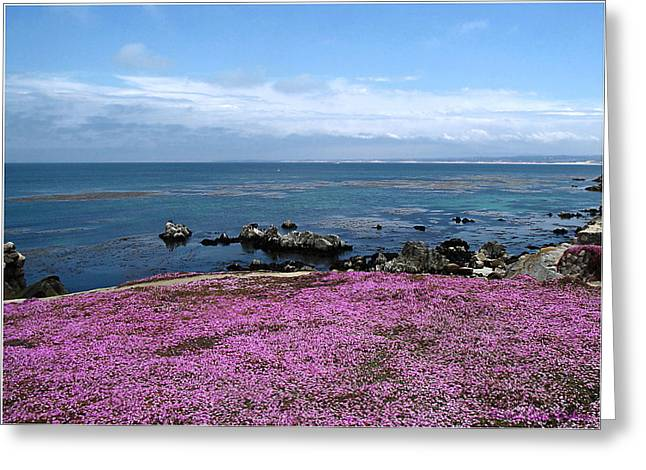 Greeting Card featuring the photograph Pacific Grove California by Joyce Dickens