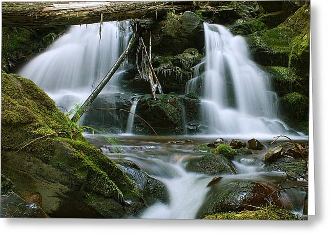 Packer Falls Greeting Card