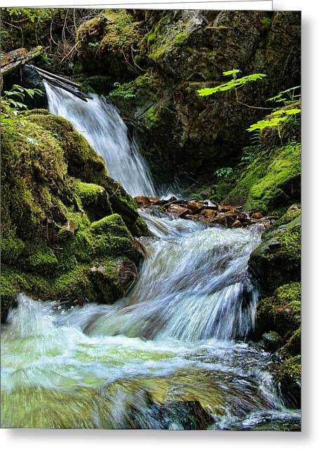 Packer Falls Vert 1 Greeting Card
