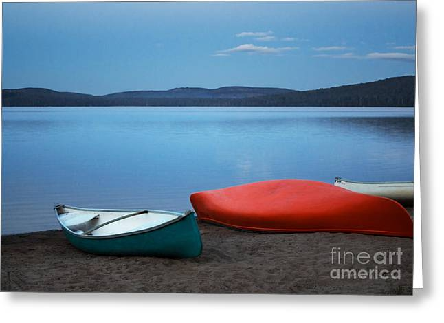 Paddle's End Greeting Card by Barbara McMahon