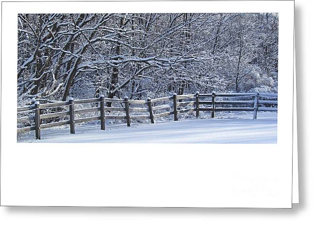 Paddock In Blue Greeting Card