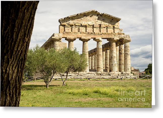 Paestum Temple Greeting Card by Prints of Italy
