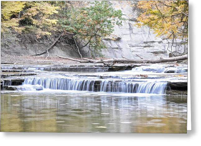 Greeting Card featuring the photograph Paine Creek by David Armstrong