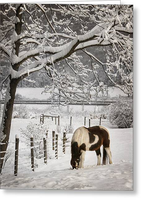 Paint In The Snow Greeting Card