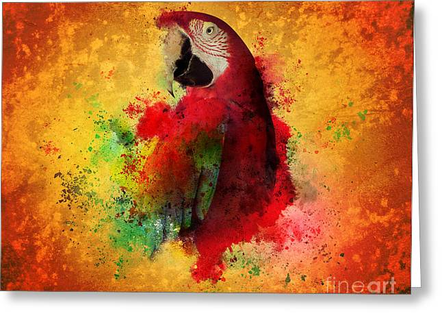 Paint Splatters Of Maccaw Parrot Greeting Card by Angela Waye