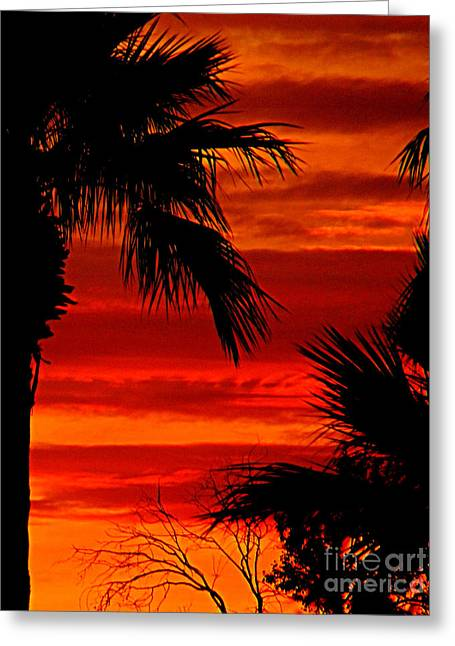Paint The Sky Red And Orange Greeting Card