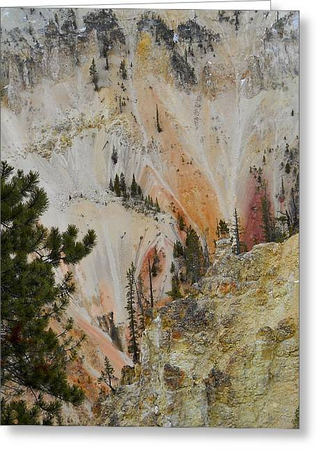 Greeting Card featuring the photograph Painted Canyon At Lower Falls by Michele Myers