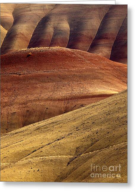 Painted Curves Greeting Card by Mike  Dawson