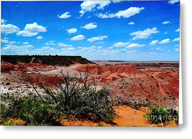 Greeting Card featuring the photograph Painted Desert by Utopia Concepts