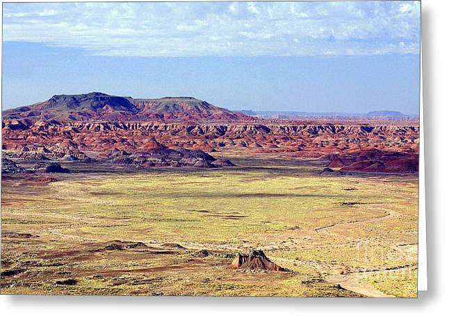 Painted Desert Vista Greeting Card by Douglas Taylor