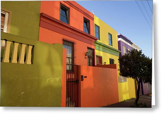 Painted Houses In A Row, Cape Malays Greeting Card