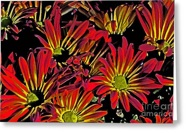 Greeting Card featuring the photograph Painted Mums by Judy Wolinsky