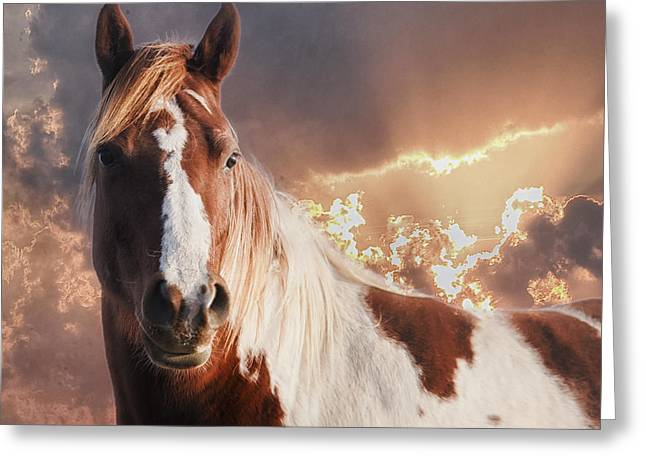 Painted Sunrise Greeting Card by Ron  McGinnis