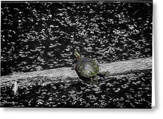 Painted Turtle In A Monochrome World Greeting Card