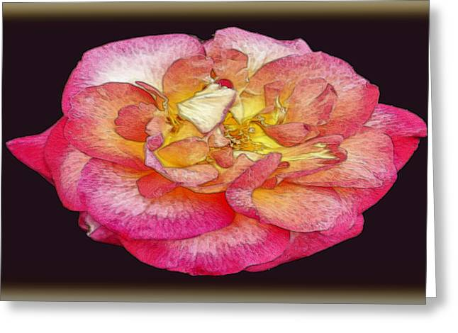 Painted Rose Greeting Card by Dennis Dugan