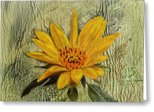 Painterly Sunflower Greeting Card by Sandi OReilly