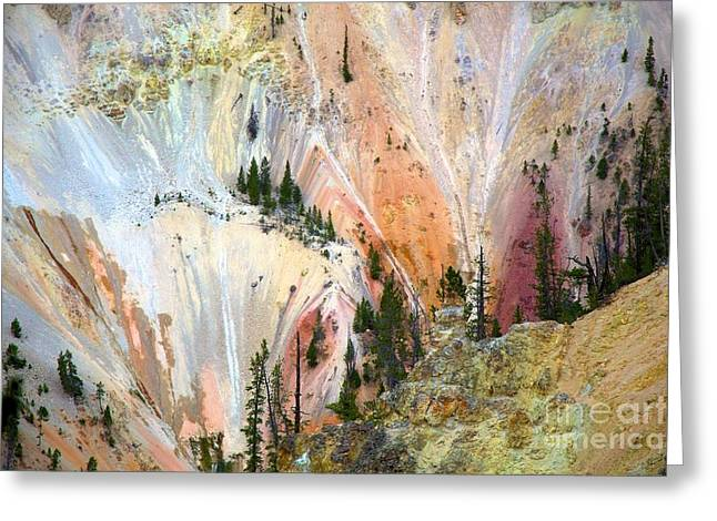 Painter's Point Yellowstone  Greeting Card by Terry Horstman