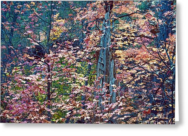 Painting Of Leaves Greeting Card