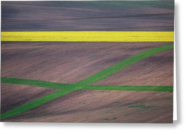 Painting The Fields Greeting Card