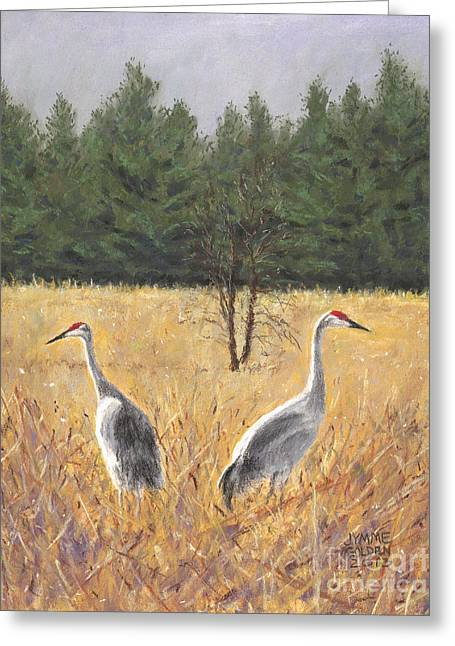 Pair Of Sandhill Cranes Greeting Card by Jymme Golden