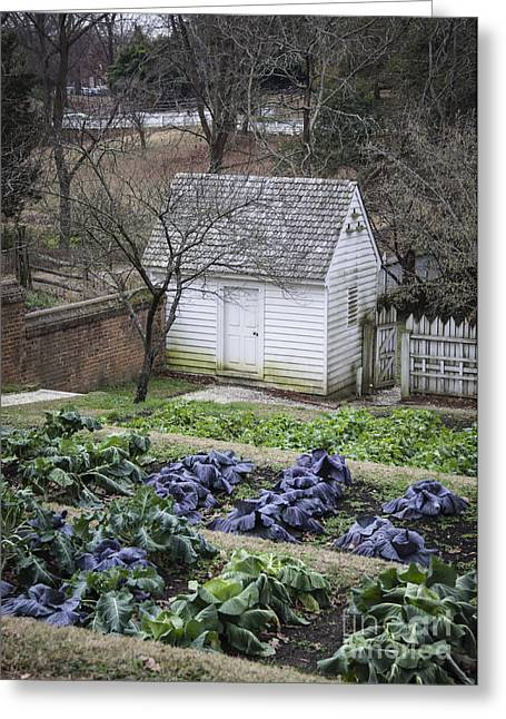 Palace Kitchen Winter Garden Greeting Card