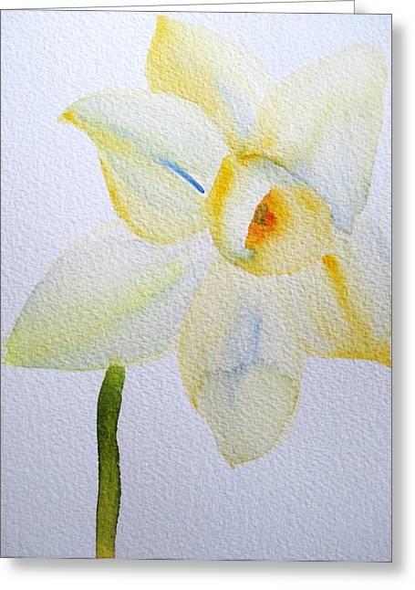 Pale Yellow Daffodil Greeting Card by Sacha Grossel
