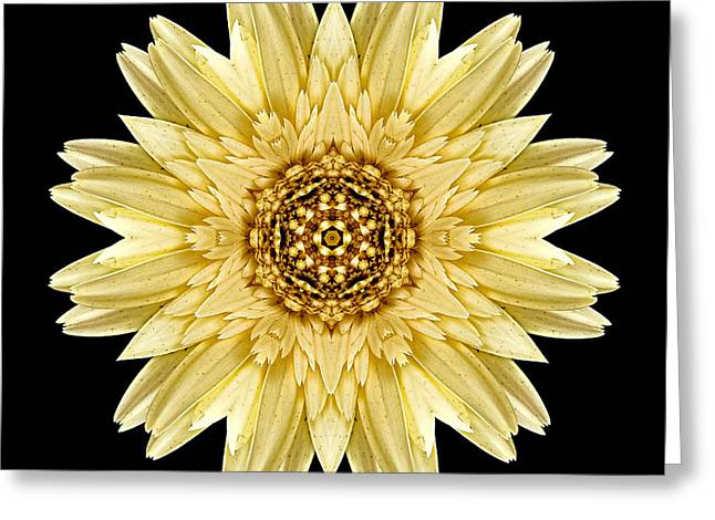 Greeting Card featuring the photograph Pale Yellow Gerbera Daisy I Flower Mandala by David J Bookbinder