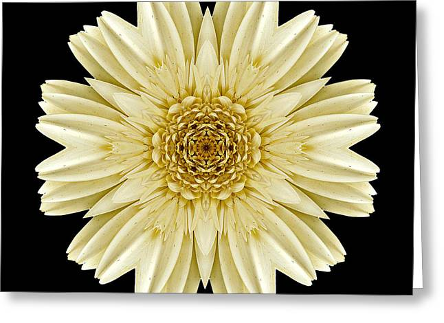Greeting Card featuring the photograph Pale Yellow Gerbera Daisy IIi Flower Mandala by David J Bookbinder