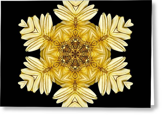 Greeting Card featuring the photograph Pale Yellow Gerbera Daisy Vii Flower Mandalaflower Mandala by David J Bookbinder