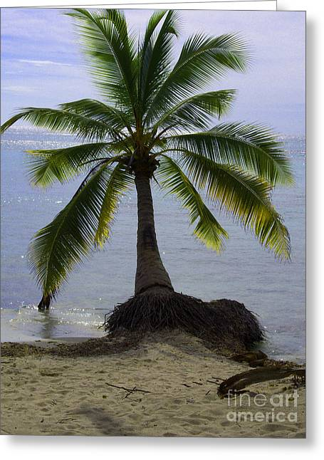 Palm At The Edge Of The Sea Number Two Greeting Card