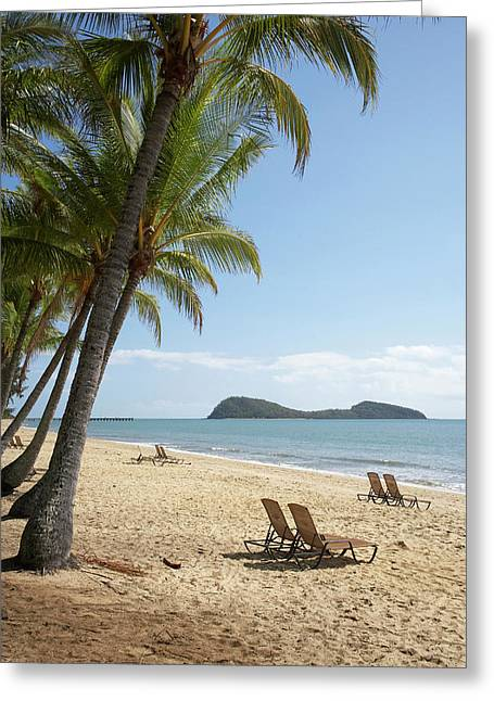 Palm Cove, Cairns, North Queensland Greeting Card by David Wall