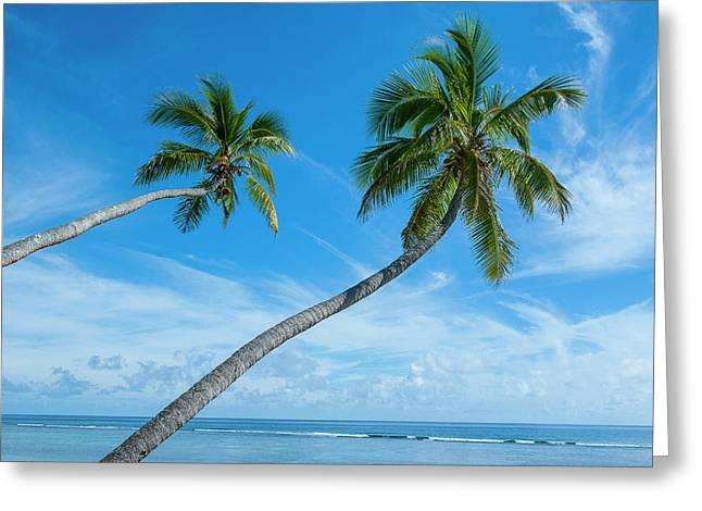 Palm Fringed Kolovai Beach, Tongatapu Greeting Card by Michael Runkel