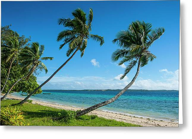 Palm Fringed White Sand Beach On An Greeting Card by Michael Runkel