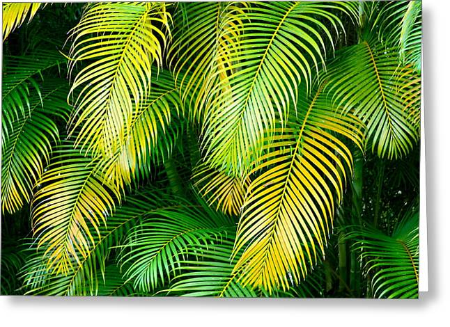 Palm Leaves In Green And Gold Greeting Card by Karon Melillo DeVega