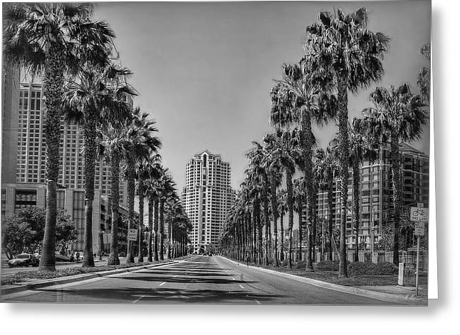 Palm-lined Parkway B/w Greeting Card by Hanny Heim