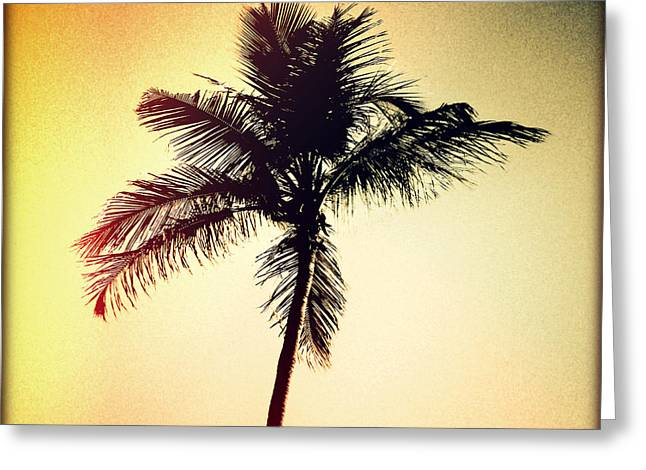 Palm Silhouette Sunset Greeting Card