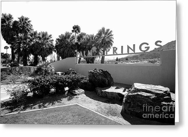 Palm Spring  Greeting Card by Art K
