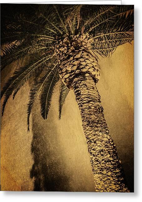 Palm Tree At The Aladdin Casino Greeting Card by YoPedro