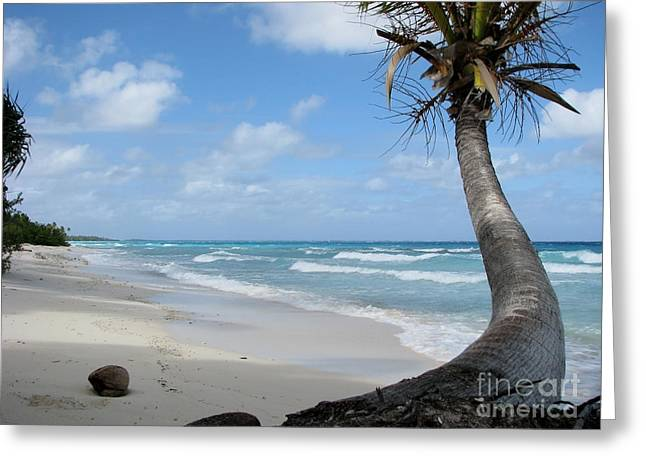 Greeting Card featuring the photograph Palm Tree On The Beach by Jola Martysz