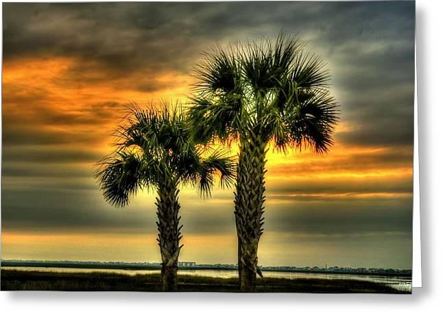 Palm Tree Sunrise Greeting Card by Ed Roberts